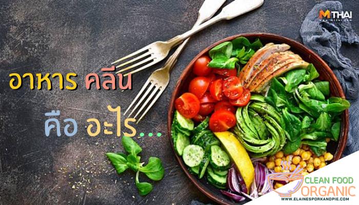 อาหารคลีนคืออะไร อาหารที่ถูกจัดทำขึ้นมาเพื่อเป็นตัวช่วยสำคัญในการดูแลสุขภาพที่ดี ซึ่งมีผลในการควบคุมน้ำหนักของผู้ที่ต้องการลดน้ำหนักได้ด้วย