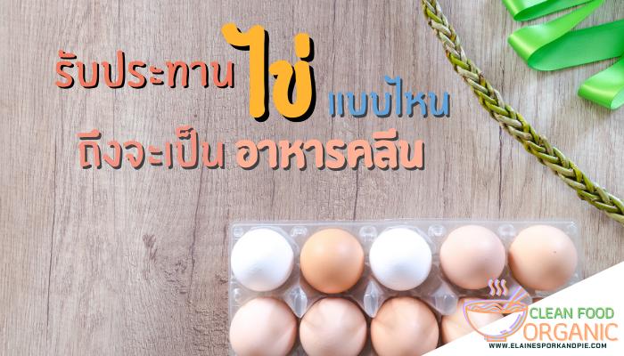 ต้องรับประทาน ไข่ แบบไหนถึงจะเป็นอาหารคลีน อาหารคลีนนั้นนอกจากจะมีประโยชน์มากมายแล้ว ยังมีส่วนช่วยในเรื่องของการลดน้ำหนักได้อย่างดีอีกด้วย