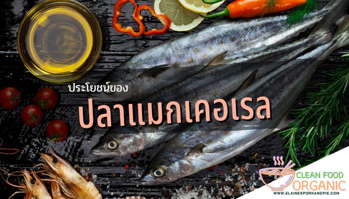 ประโยชน์ของปลาแมกเคอเรล ปลาแมกเคอเรลนั้นมีไขมันอยู่สูง เป็นแหล่งกรดไขมันโอเมกา3 นั่นเองแต่นอกจากนี้ ปลาเเมกเคอเรลก็มีข้อเสียเช่นเดียวกัน