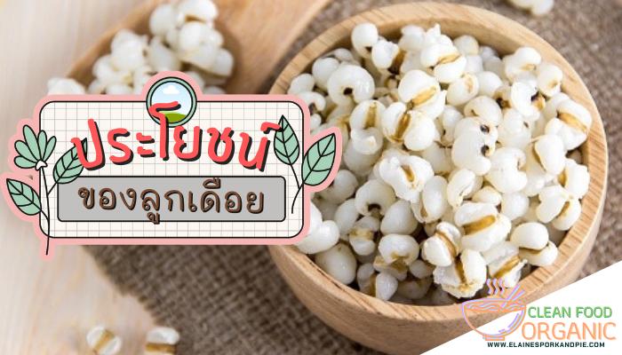 ประโยชน์ของลูกเดือย ลูกเดือยเป็นธัญพืชที่คนไทยรู้จักกันเป็นอย่างดี เนื่องจากเป็นพืชที่หาทานได้ง่าย ซึ่งลูกเดือยจะมีทั้งแบบที่ทานได้
